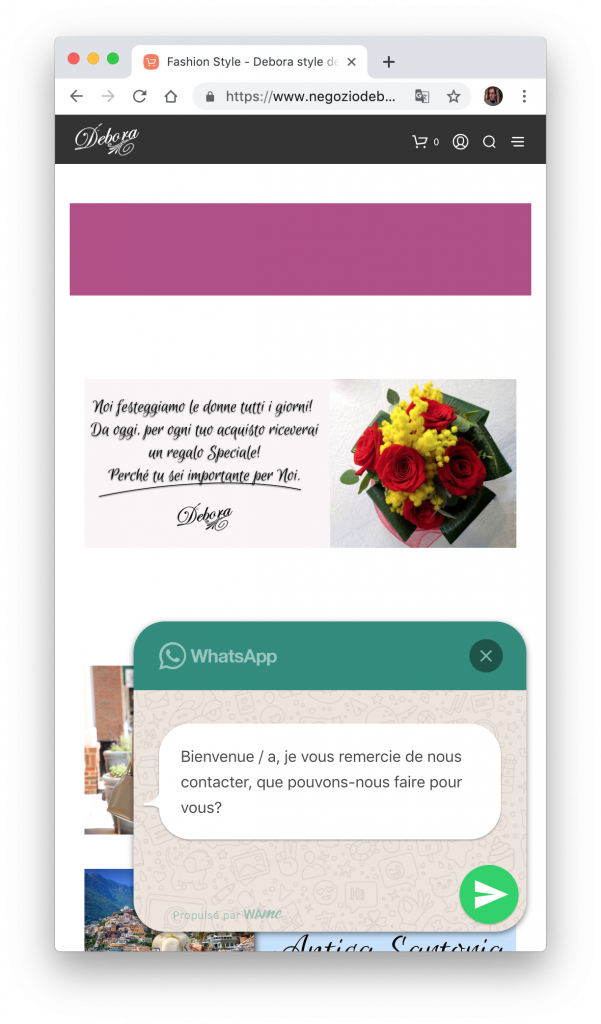 Message WhatsApp in french